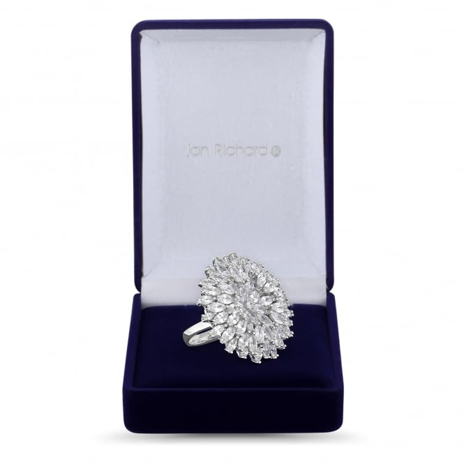 Silver Plated Floral Burst Ring In A Gift Box